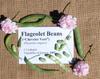 Flageolet_beans